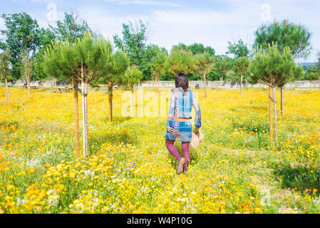 Rear view of a woman in dress walking through a field of flowers holding a hat - Stock Photo