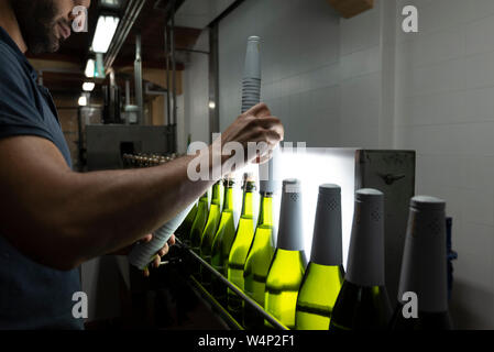 Man covering green glass Cava bottles with white foil caps on conveyor in Penedes region, Catalonia, Spain - Stock Photo