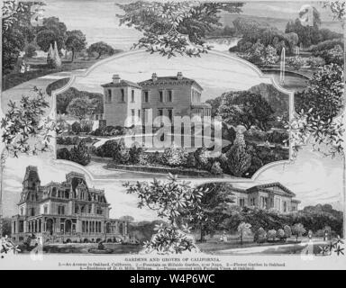 Engravings of the gardens and groves of California, Oakland Avenue, Hillside Garden fountain, Flower Garden, the residence of D. O, 1878. Mills, and Piazza covered with vines, from the book 'The Pacific tourist' by Henry T. Williams. Courtesy Internet Archive. () - Stock Photo