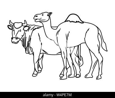 Black and White Cartoon Illustration of Dromedary Camel
