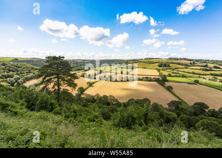 Summer View From Castle Hill, Overlooking the Torridge Valley and Fields With Blue Sky, Great Torrington, Devon, England. - Stock Photo