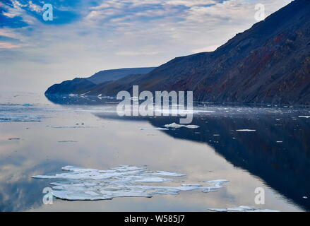 Russia. 13th July, 2019. CHUKOTKA, RUSSIA - JULY 13, 2019: The Wrangel Island State Nature Reserve, an area in the Arctic Sea which includes Wrangel Island, Herald Island and surrounding waters. Yuri Smityuk/TASS Credit: ITAR-TASS News Agency/Alamy Live News - Stock Photo