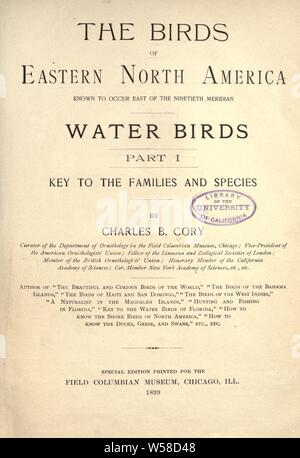 The birds of eastern North America known to occur east of the nineteenth meridian .. : Cory, Charles B. (Charles Barney), 1857-1921 - Stock Photo