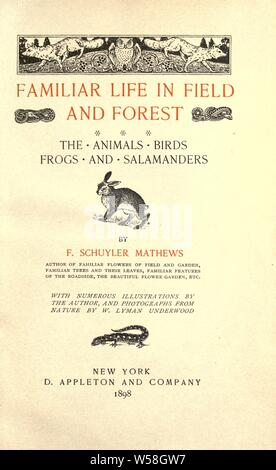 Familiar life in field and forest; the animals, birds, frogs, and salamanders : Mathews, F. Schuyler (Ferdinand Schuyler), 1854-1938 Stock Photo