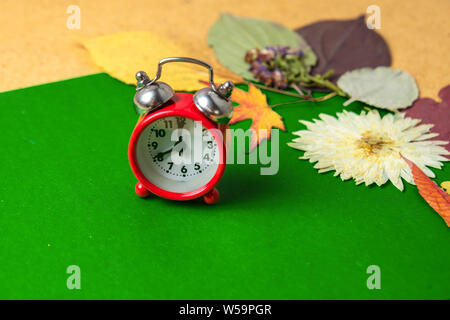 Back to school concept. Old alarm clock on the background of dry autumn leaves. Copy space. - Stock Photo