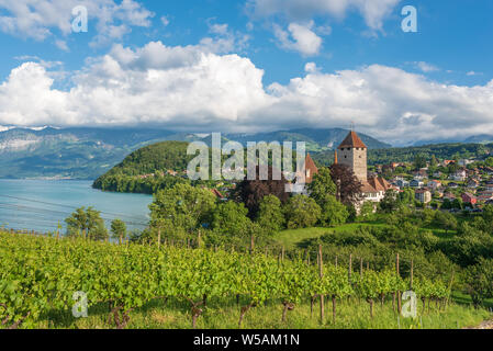 Spiez castle on lake Thun, Spiez, Bernese Oberland, Switzerland, Europe - Stock Photo