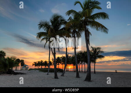Sunrise at palm trees by the ocean beach in Key Biscayne, Florida - Stock Photo