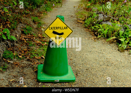A yellow yield sign on a green cone for a Caterpillar Crossing on a dirt path at the San Francisco Botanical Garden in San Francisco, California, USA. - Stock Photo