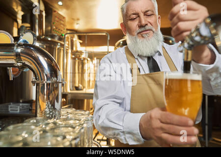 Bearded bartender in white shirt and brown apron pouring in cold glass fresh beer with foam. Handsome, elderly barman of mini brewery holding glass with lager beer. - Stock Photo