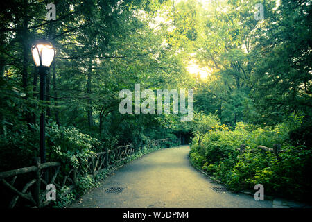 Beautiful landscape from Central Park, New York City