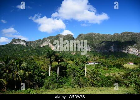 Mogotes in Viñales Valley - Stock Photo