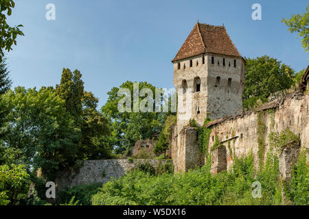 The Tinsmith's Tower, Old Sighiora, Romania