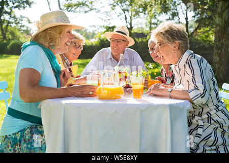 Elderly friends having picnic in park on a sunny day. Sitting around table at open air, four women and one man chatting, drinking orange juice and hav - Stock Photo