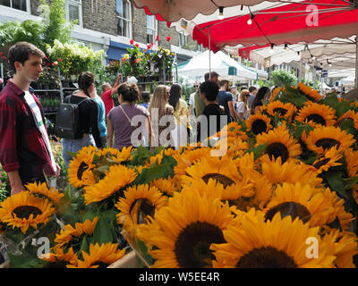 View of sunflowers for sale on a market stall at the popular Columbia Road Flower Market in Bethnal Green in London - Stock Photo