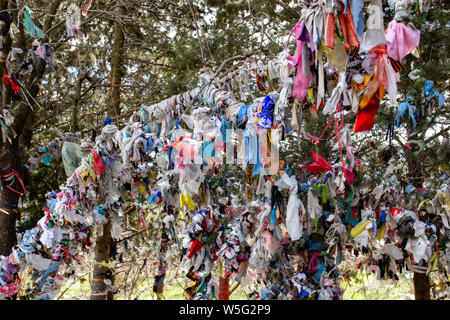 Making a mess. Wedding tradition in Georgia, Decoration - colorful ribbons, even garbage on bush and trees, on the young couple's way. - Stock Photo