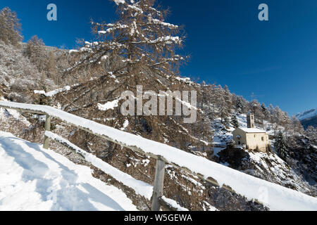 Italy, Lombardy, Retiche Alps, Camonica Valley, snowshoeing along the trail to the ancient alpine church of San Clemente - Stock Photo