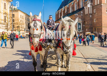 Horse drawn carriage in the main square, Rynek Glowny, in the medieval old town, UNESCO World site, in Krakow, Poland, Europe. - Stock Photo