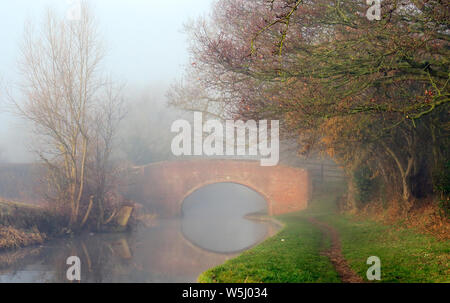 Misty early morning on the Trent and Mersey canal a British Waterways canal near  Handsacre in Staffordshire showing subdued light forms of nature, so - Stock Photo
