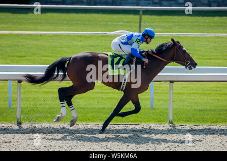 Jockey and thoroughbred horse racing at Keeneland racetrack in Lexington Kentucky - Stock Photo