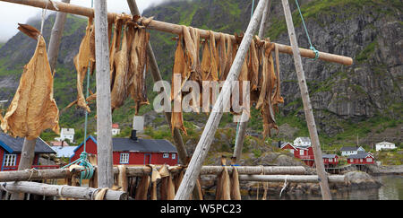Drying stock fish cod in Å village with traditional red rorbu houses and fjord on the background in summer, Lofoten Islands, Norway - Stock Photo