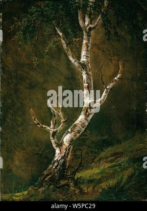 Johan Christian Dahl - Study of a Birch Tree - - Stock Photo