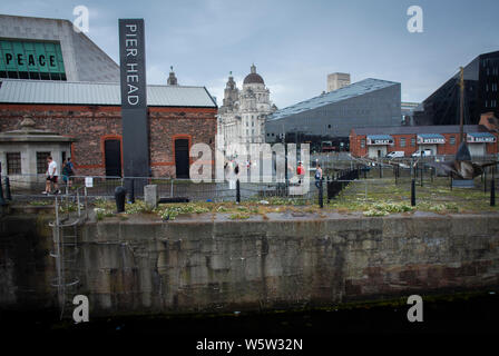 View back to Pier Head from The Royal Albert Dock, Liverpool, UK. - Stock Photo