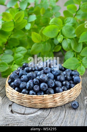 Fresh ripe blueberries in basket on wooden table - Stock Photo