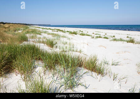 White sand beach of Dueodde on island's south coast, Dueodde, Bornholm Island, Baltic sea, Denmark, Europe - Stock Photo