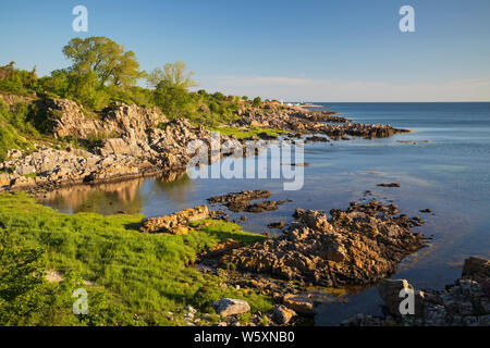 Looking north to Allinge along rugged coastline at Sandkaas on north east coast, Allinge, Bornholm Island, Baltic sea, Denmark, Europe - Stock Photo
