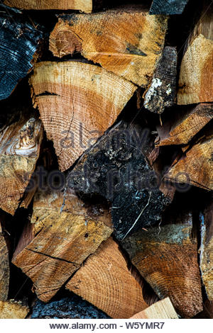 Firewood pile ready for the winter - Stock Photo