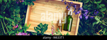 Organic Spa Cosmetic With Herbal Ingredients Serum in bottle on plant background - Stock Photo