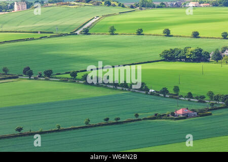 View on Green Scottish fields with wheat and barley from top North Berwick Law. North Berwick. East Lothian. Scotland, United Kingdom. Aerial photo - Stock Photo