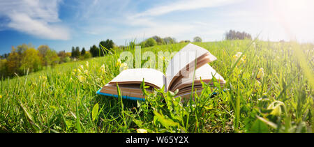Open book in the grass on the field - Stock Photo