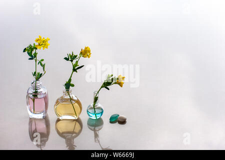 Three bottles of aromatic oils are in line with different color oils. In each stuck flower. Nearby are a pebble and a glass piece. Reflections on the - Stock Photo