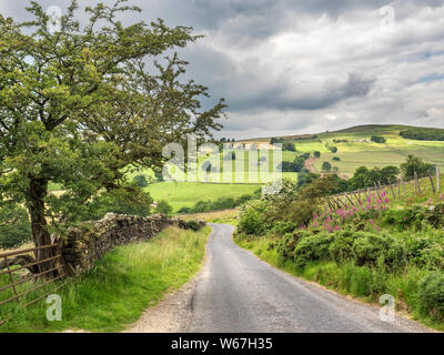 Looking down Trapping Hill near Lofthouse in Upper Nidderdale North Yorkshire England