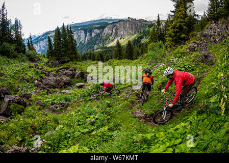 AVORIAZ, FRANCE. Three mountain bikers riding a narrow, twisty trail through green wilderness with the cliffs of Avoriaz ski resort in the distance. - Stock Photo