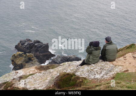 Whale Watchers Seated on St Agnes Head Cliff Top. North Cornish Coast, UK. Spring, 2019. - Stock Photo