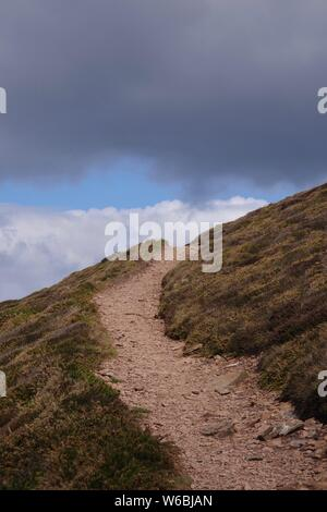 South West Coastal Path through Coastal Heathland by Wheal Coats, St Agnes, North Cornwall on an Overcast Spring Day, UK. - Stock Photo