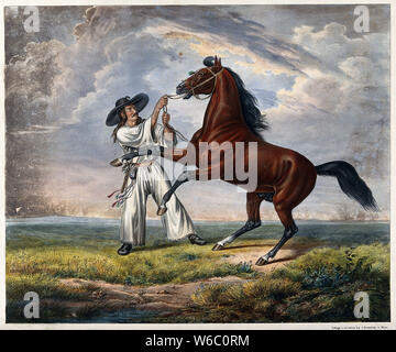 A man in white dress with a large brimmed black hat is holding a rearing horse by its reins. Coloured lithograph. - Stock Photo