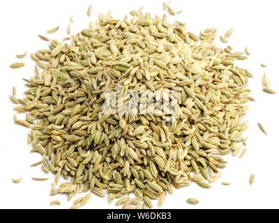 Fennel seeds (Foeniculum vulgare) on a white background - Stock Photo