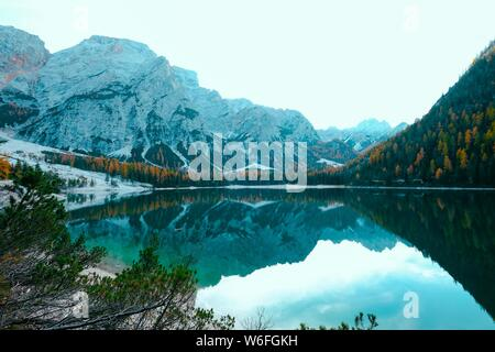 A Lake Moraine surrounded by yellow and green trees near snowy mountains in Canada - Stock Photo