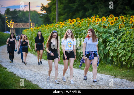 Brezje, Croatia - 20th July, 2019 : Young girls walking thru the field of sunflowers on the entrance to the Forestland, ultimate forest electronic mus - Stock Photo