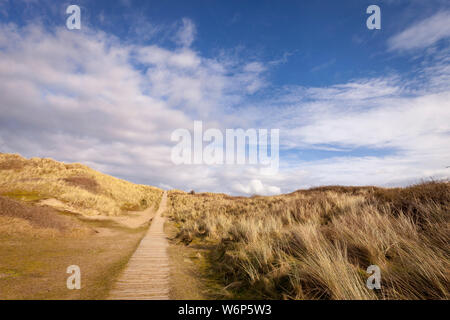 Sand dunes at Braunton Burrows nature reserve, North Devon, UK - Stock Photo