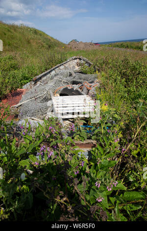 Remains of a wooden rowing boat with nets, ropes and fishing tackle in the hull overgrown with grass and plants next to Keiss harbour, Caithness,U.K. - Stock Photo