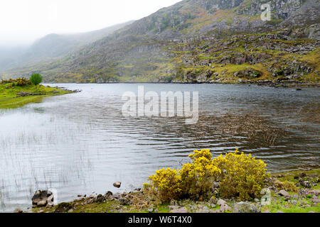 The River Loe and narrow mountain pass road wind through the steep valley of the Gap of Dunloe, nestled in the Macgillycuddy's Reeks mountains, County - Stock Photo