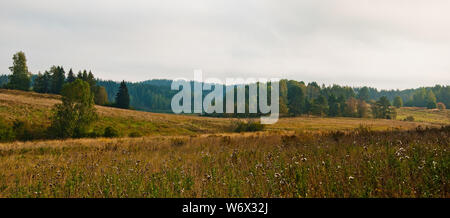 Scandinavian landscape. Autumn forest in South Karelia - Stock Photo