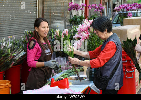 Customer evaluates the quality of cut flowers at Flower Market Road in Mong Kok, Hong Kong - Stock Photo
