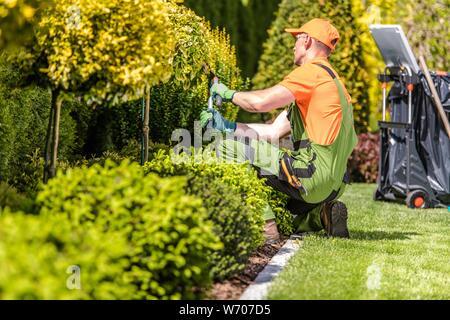 Caucasian Garden Worker in His 30s Trimming Plants Using Large Scissors. - Stock Photo