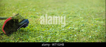 String trimmer on mown grass. Banner format background with copy space. Theme of lawn care services, tool rental or repair - Stock Photo
