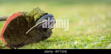 String trimmer on mown grass., close up Banner format background with copy space. Theme of lawn care services, tool rental or repair. - Stock Photo